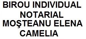 BIN MOSTEANU ELENA CAMELIA